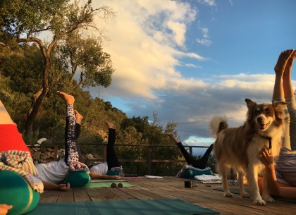yoga shalas  itha108